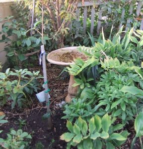 The popular terracotta bird bath