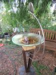 My glass bird bath