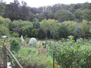 Waterworks Road community garden