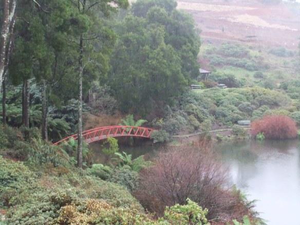 The Emu Valley rhodo garden