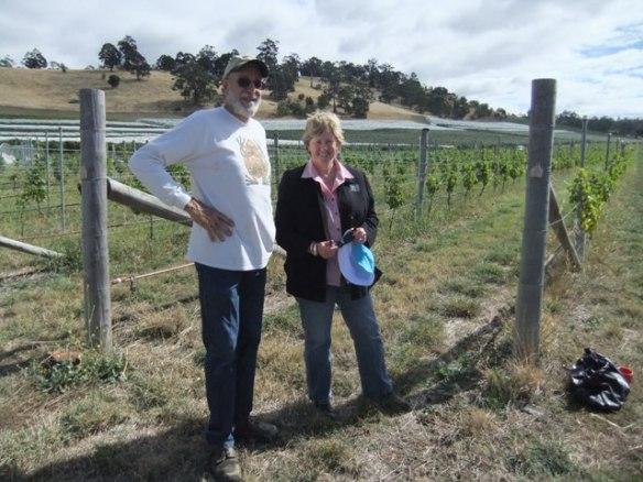 Tony Sherer and his wonderful chemical free vineyard