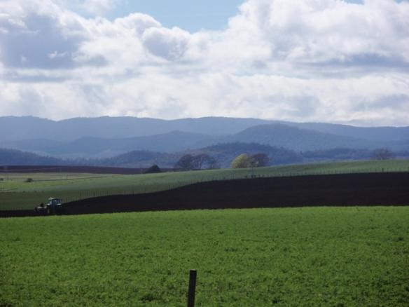 The rolling hills and fertile soils of Sassafras