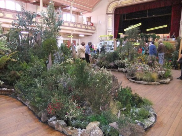 Nature takes over Hobart City Hall at the Wildflower Spectacular