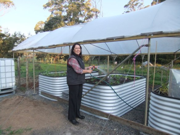 Then...Anne Maree watering her seedlings earlier this year