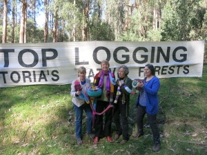 Knitting Nanna's of Toolangi